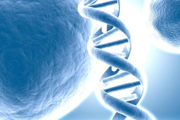 美国第三代试管婴儿筛查遗传病
